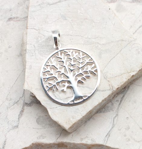 A photo of the The Grow Together Pendant product