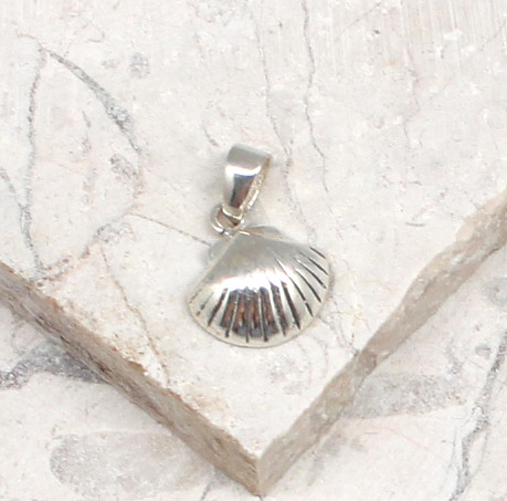 A photo of the The Mini Scallop Pendant product