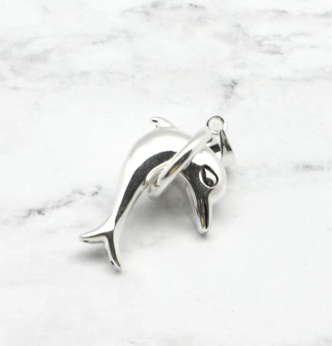 A photo of the Dolphin Tricks Pendant product