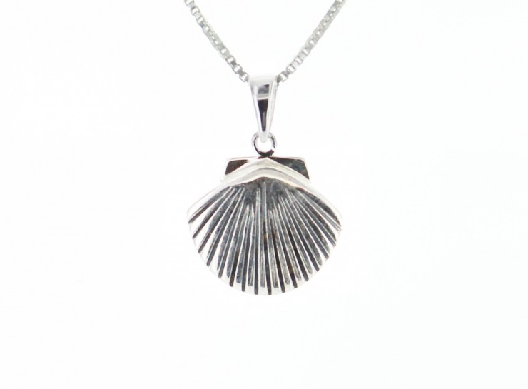 approximately silver this tiny scallop with dot page shell sterling nature necklace product charm tall chain inspired an measures blue pure file jewelry