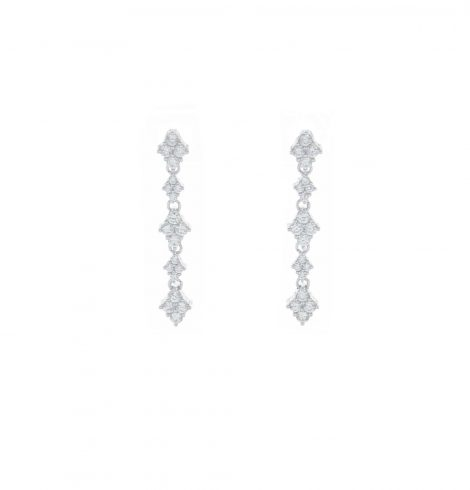 A photo of the Long Elegant Earrings product
