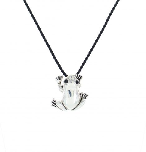 silver_frog_pendant