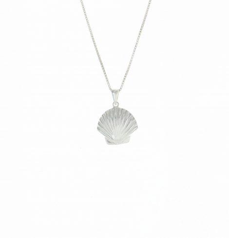 large_scallop_shell_pendant_plain