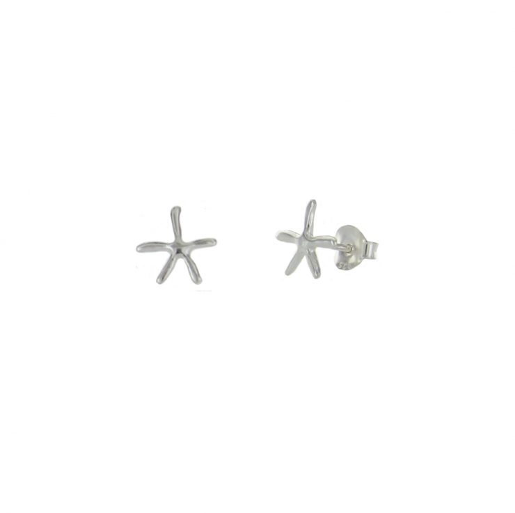 A photo of the Cute Small Starfish Studs product
