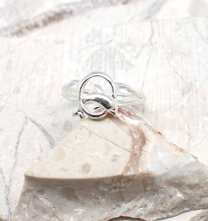 A photo of the The Dolphin In A Hoop Toe Ring product