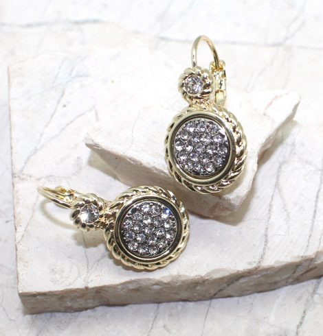 A photo of the Golden Lever Back Earrings product