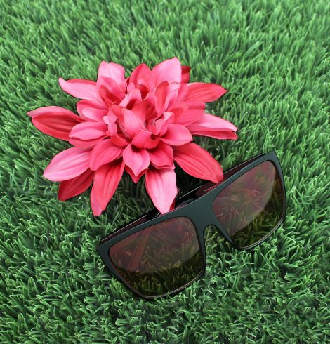 A photo of the Fun In The Sun Sunglasses product