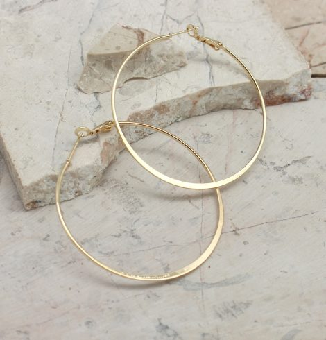 A photo of the Prim and Polished Hoop Earrings product