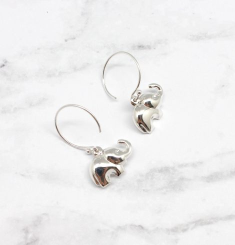 A photo of the The Lucky Earring product