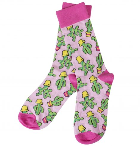A photo of the Cactus Socks product