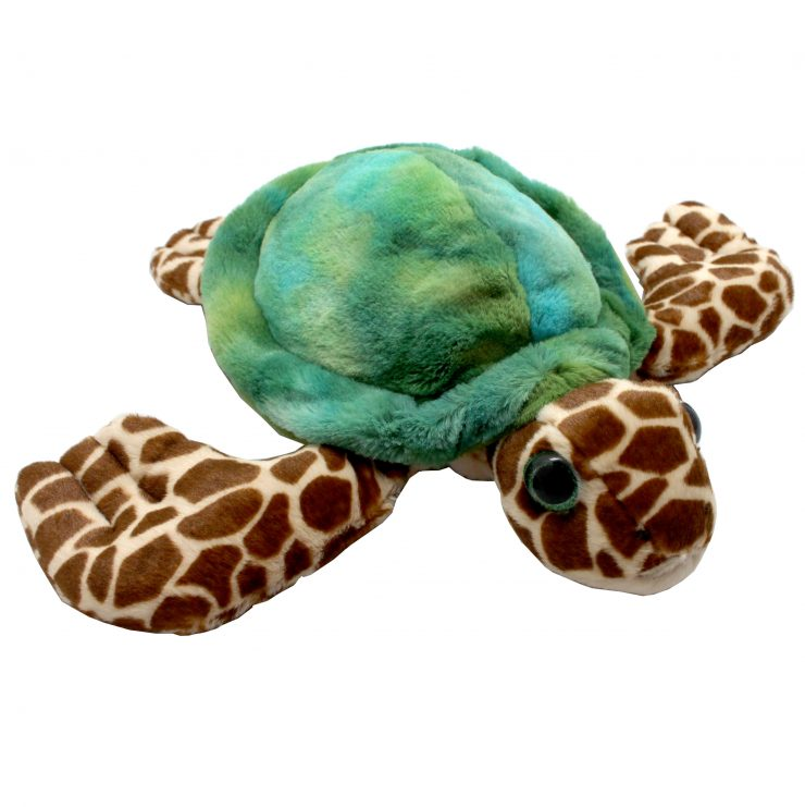 A photo of the Under The Sea Turtle product