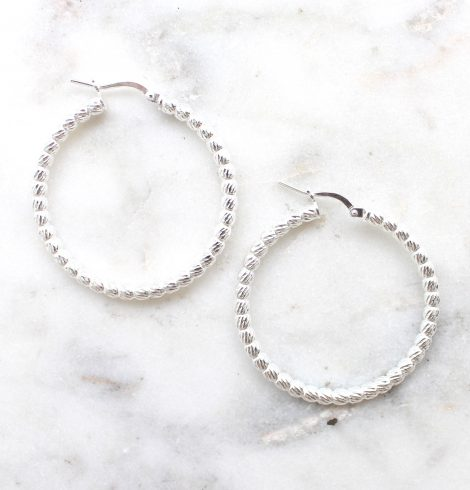 A photo of the Ravenna Hoop Earrings product