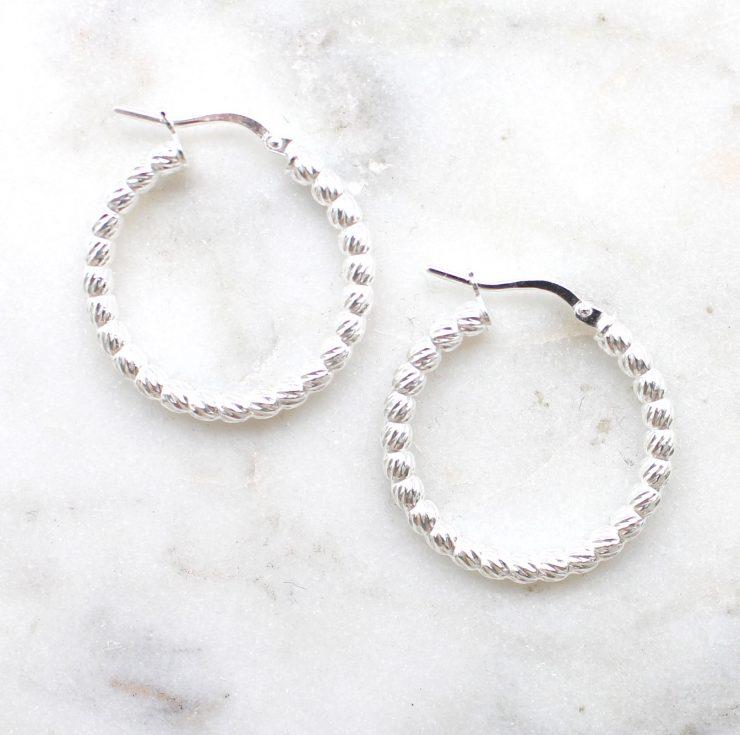 A photo of the Ravenna Hoop Earrings product
