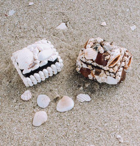 A photo of the Shell Treasure Box product