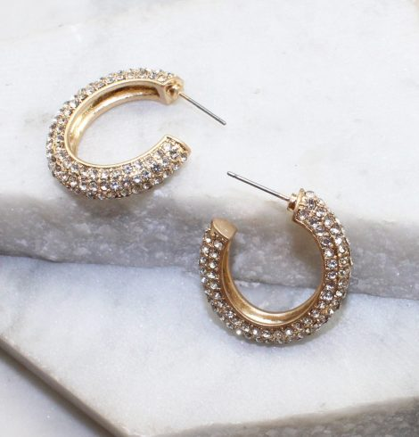 A photo of the Ava Hoops In Clear product