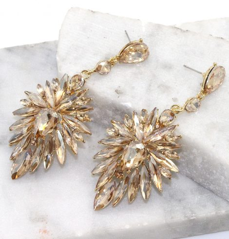 A photo of the Spotlight Earrings in Clear product