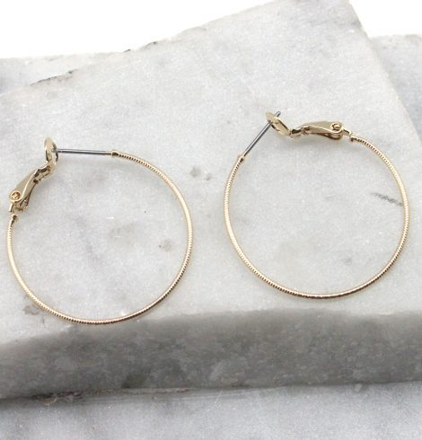 A photo of the Classic Hoop Earrings product