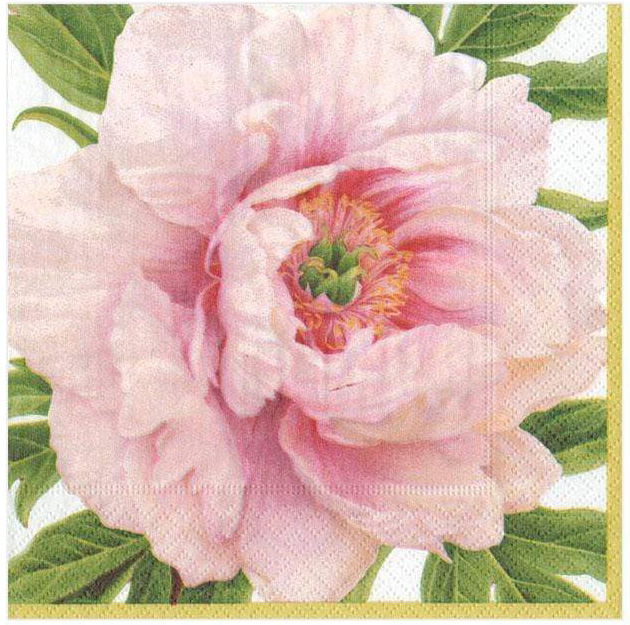 A photo of the Blush Flower Napkins product