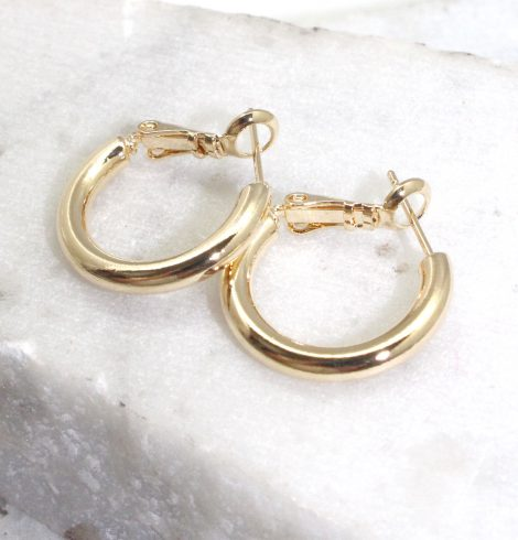 A photo of the Roxy Hooplette Earrings product