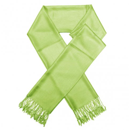 A photo of the Light Olive Pashmina product