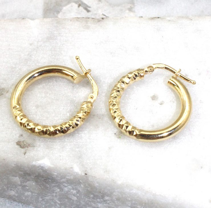 A photo of the Naples Hoop Earrings product