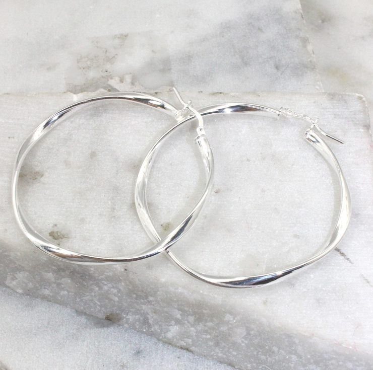 A photo of the Reggio Hoop Earrings product