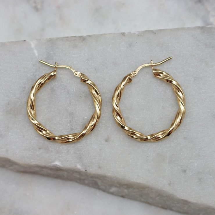 A photo of the Naya Hoops product